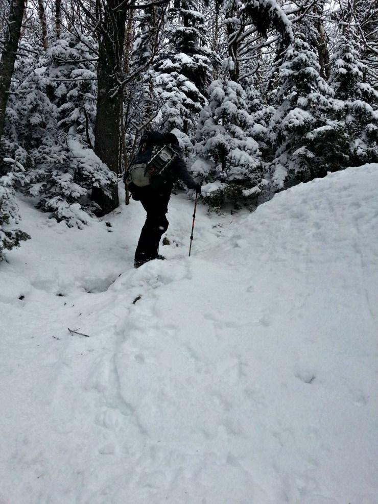 nineteen-mile brook trail