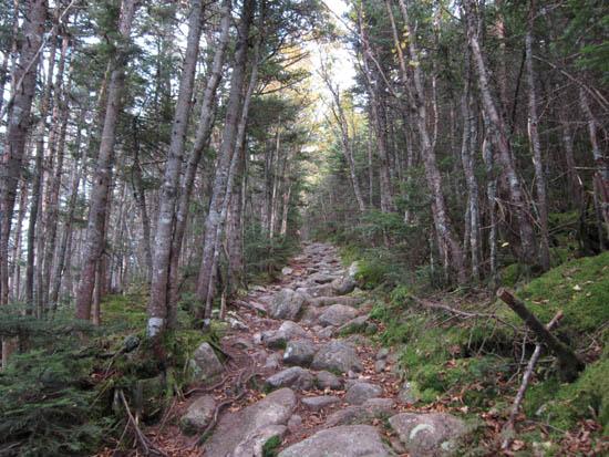 mt garfield trail