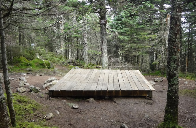 Tent platform at Avery Memorial Campsite: low impact camping in Maine.