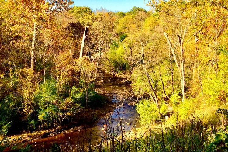 Waterfall Glen Sawmill Creek