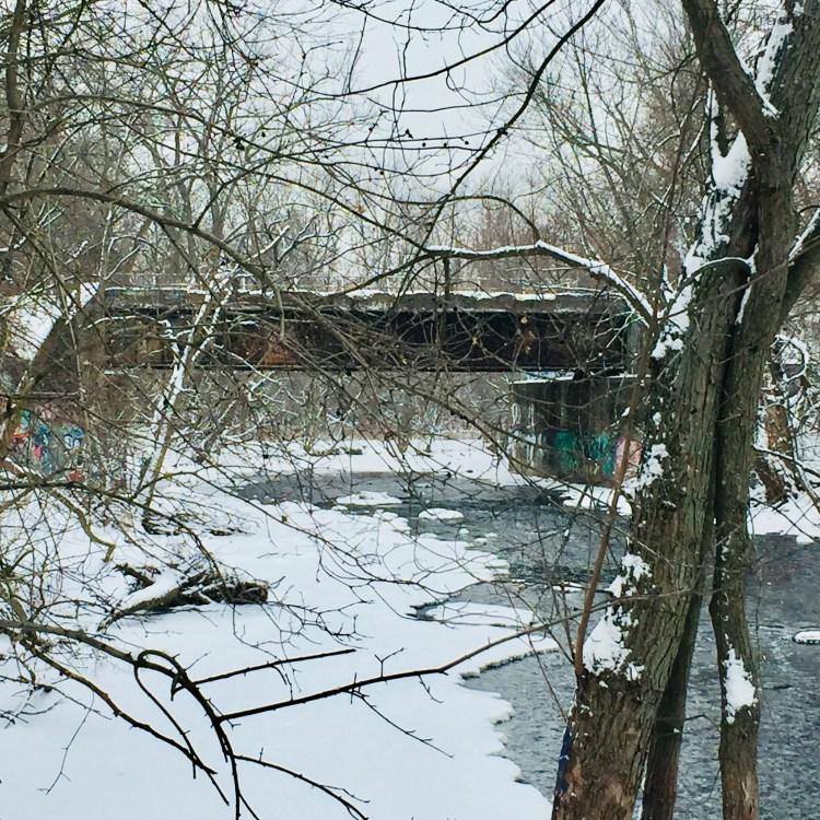 LaBagh Woods Bridge Over Chicago River