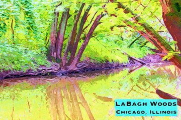 LaBagh Woods Thumbnail