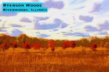 Ryerson Blog Thumbnail