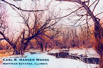 Hansen Blog Thumbnail