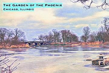 Phoenix Blog Thumbnail