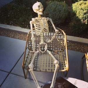 skeleton-fat-loss