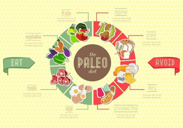 paleo diet infographic