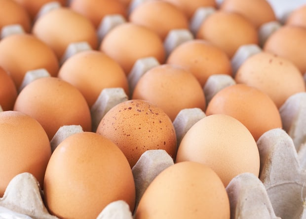 how many eggs a day should i eat