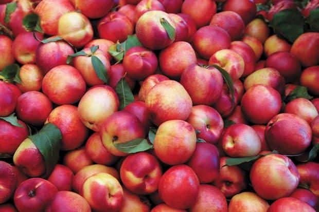 nectarines superfood