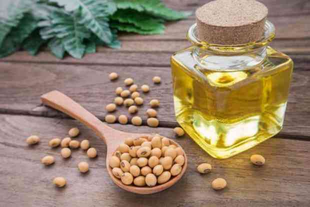 soybean oil bad for you