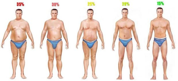 man boobs body fat percentage