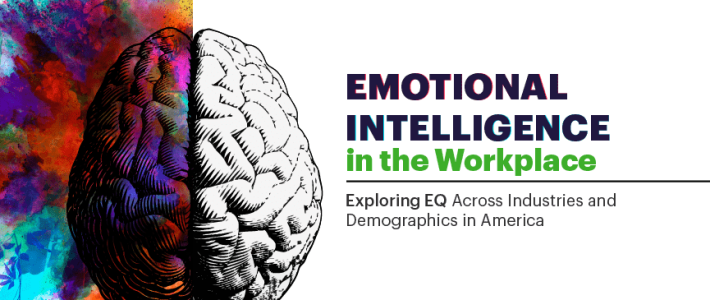 Emotional Intelligence For Work Training