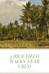 Explore the rural areas just outside Ubud's busy, traffic-clogged streets