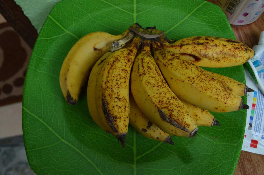 Tasty fresh bananas from the garden at Kubu Sari Guesthouse