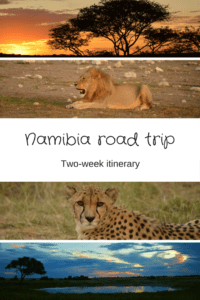 Have you ever wanted to road trip Africa? Namibia is a great place to start!