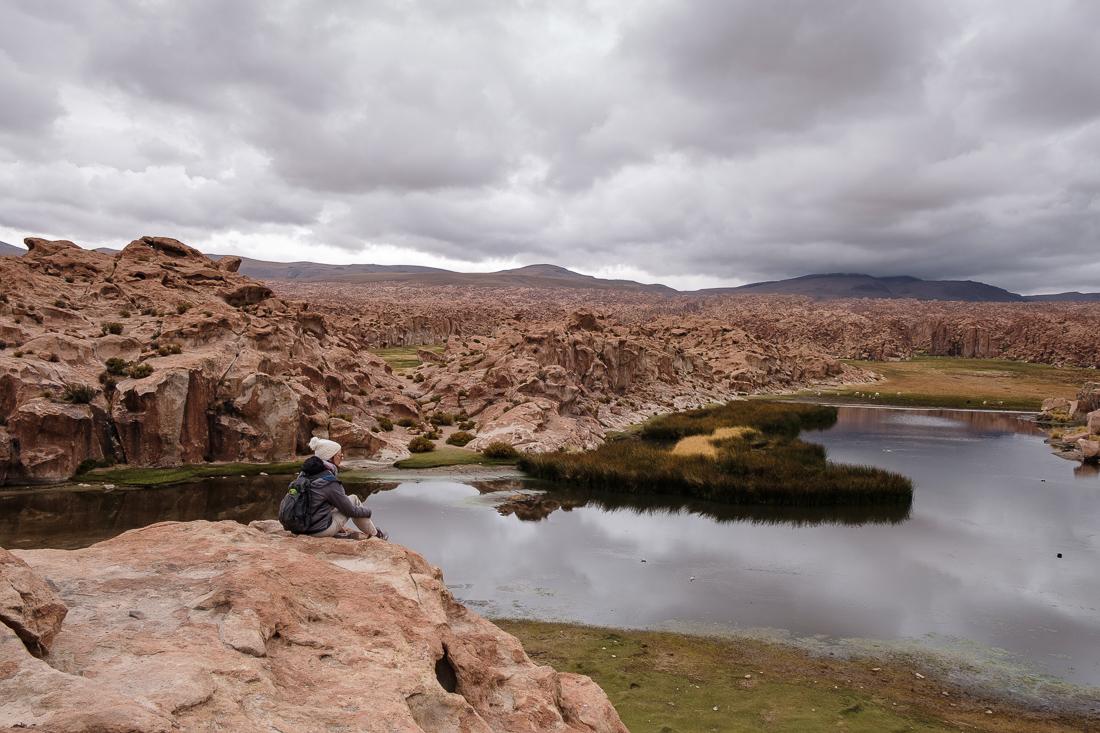 laguna negra sud lipez bolivie