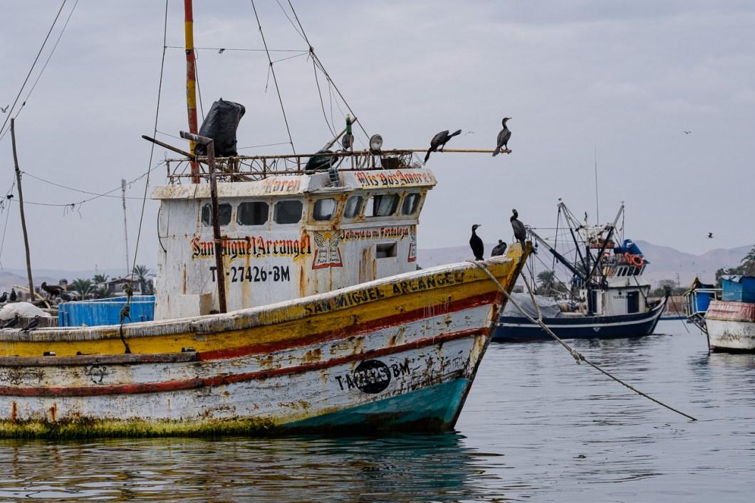 paracas bateau pérou