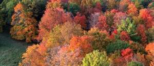 <b>Friday's Food for Thought: Mapping Autumn</b>