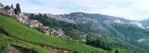 darjeeling | Top 10 Tourist Destinations in India