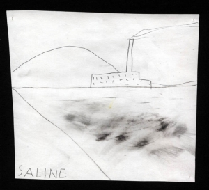 tralau_saline4