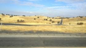 California, sun, dry, burnt, landscape, yellow,