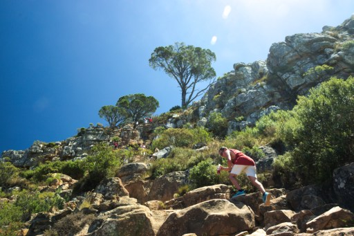 people climbing lions head, busy trail to the summit, summer, cape town, south africa