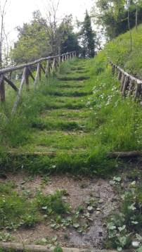 A walk to Siena 2