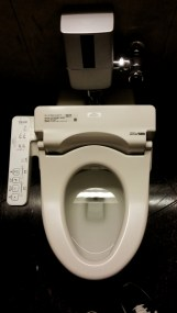 Toilet Technology - very useful