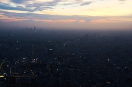 Tokyo from Above dusk