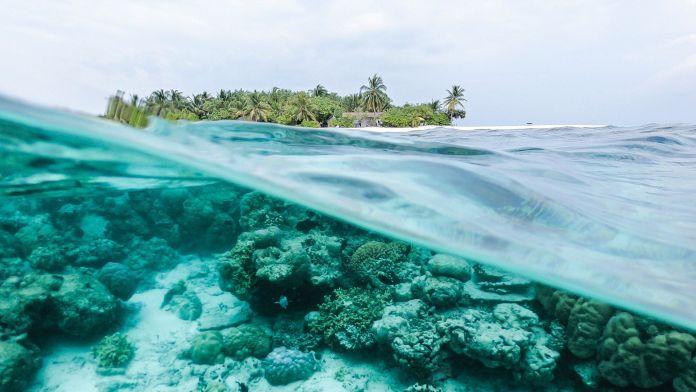 turismo sostenibile  turismo e sostenibilità  il turismo sostenibile: definizione e  come funziona