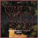 Armin van Buuren feat. Sam Martin – Wild Wild Son (Fatum & Richard Durand Remixes)