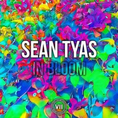 Sean Tyas - In Bloom
