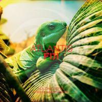 Atlantis - Fiji (Forerunners & Kolonie Remixes)