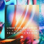 Liquid Soul & DJ Dream – Liquid Dream (Sean Tyas Remix)