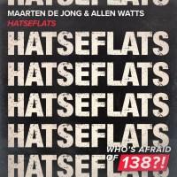 Maarten de Jong & Allen Watts - Hatseflats