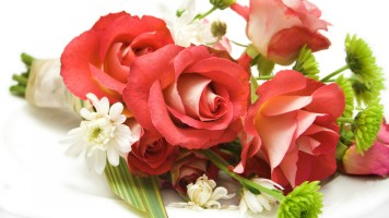 Free-download-desktop-rose-wallpapers