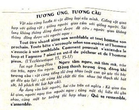 tuong ung tuong cau