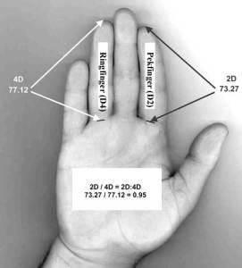 Hur man mäter förhållandet mellan pekfinger och långfinger (D2:D4)