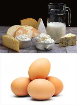 Ägg och mjölkprodukter såsom ost, mjölk, yoghurt, smör, grynost och grädde är näringsbomber som utgör en mycket viktig del i lakto-ovovegetarianens kost. Mjölk och är nog två av de mest optimala livsmedlen som finns och just dessa livsmedel gör mycket stor skillnad jämfört med den helvegetariska kosten