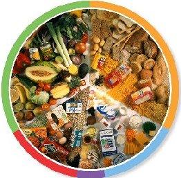 vegetarisk tallriksmodell