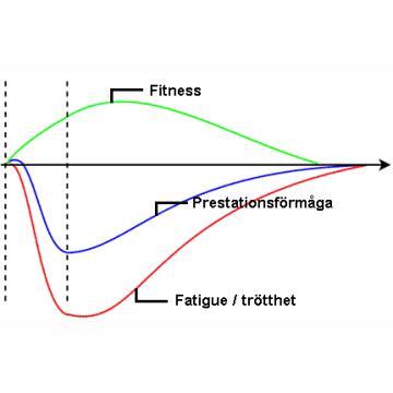 En bild över modellen Fitness-fatigue