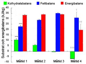 Fettbalans, kolhydratsbalans och energibalans 5 timmar efter de 4 olika måltiderna