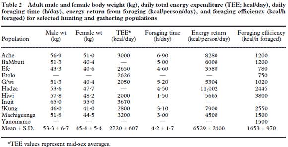 Energiförbrukning, tid spenderad med att samla in mat och effektiviteten när det gäller att samla in mat i olika samlar och jägarfolk
