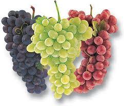 Det finns många olika typer av druvor