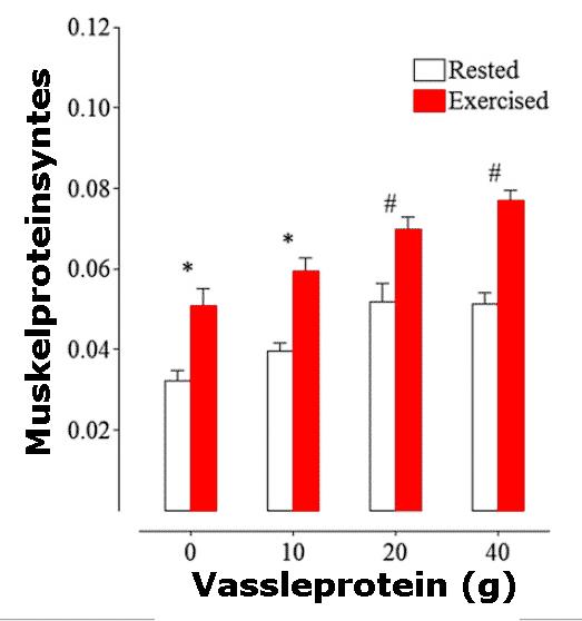 Höjning av proteinsyntesen av olika doser vassle