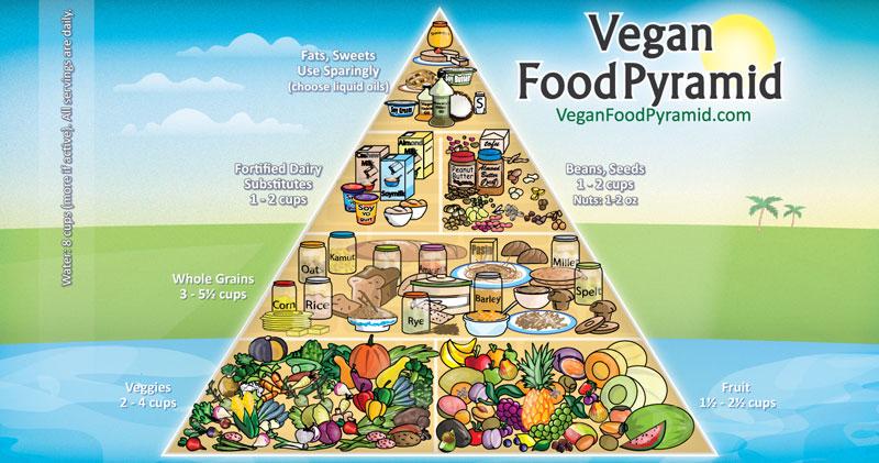 Lever vegetarianer och veganer längre än andar?