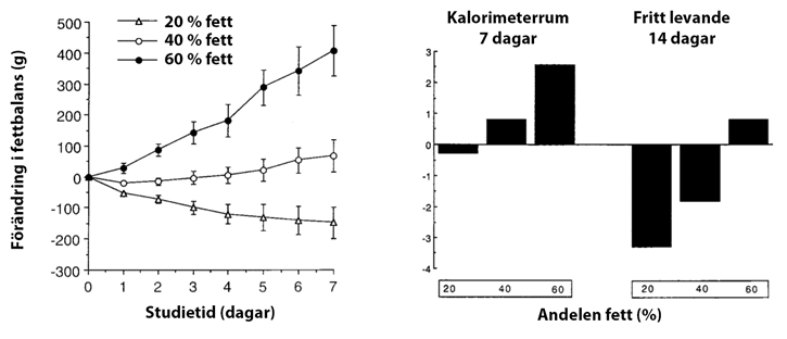 Mer fett innebar högre energiintag