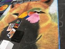 Street painting Festival 2 (80)
