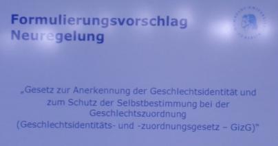 """Formulierungsvorschlag Neueregelung: """"Gesetz zur Anerkennung der Geschlechtsidentität und zum Schutz der Selbstbestimmung bei der Geschlechtszuordnung (Geschlechtsidentiäts- und - zuordnungsgesetz - GizG)"""""""