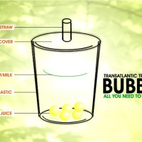 "Bubble Tea: All you need to know about it! (PLUS: ""Like it?""-survey and video)"